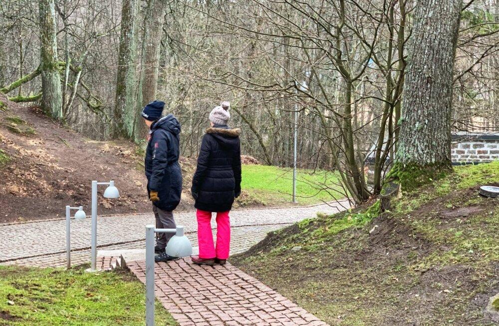 Teadlased: nädalas 2 tundi roheluses jalutamist teeb töö- ja koolieluga imet