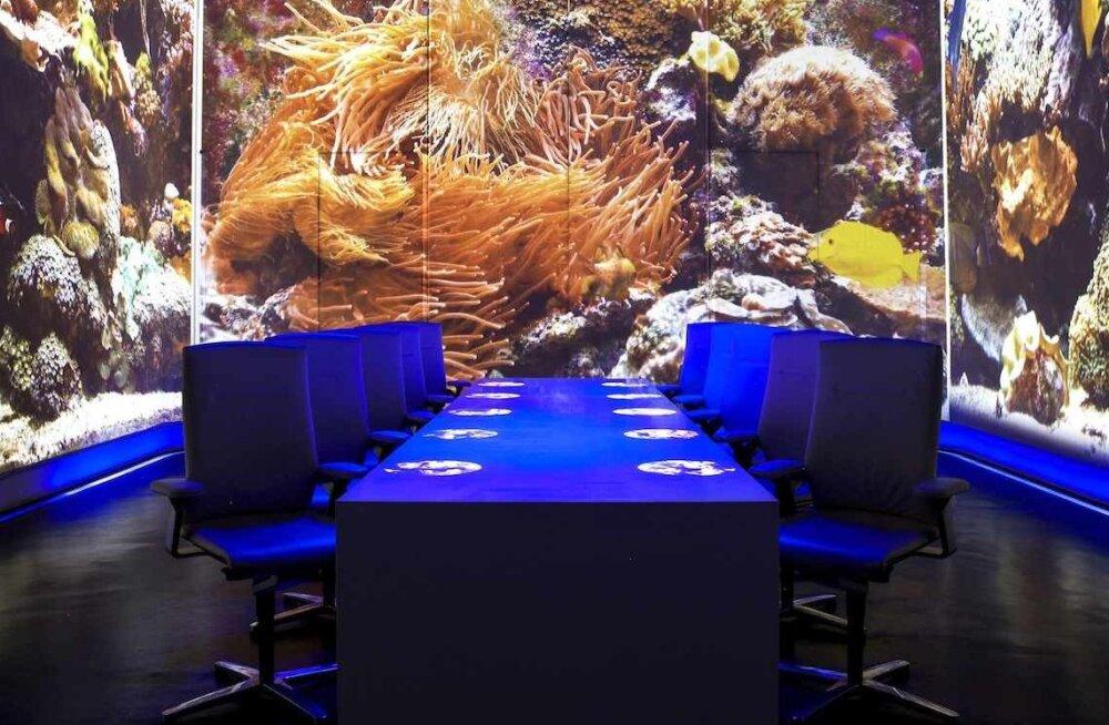 Maailma kõige innovaatilisem restoran paikneb Shanghais: lisaks 1000-dollarilisele söögile üllatatakse ka pildi, heli ja lõhnadega