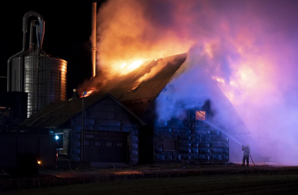 FOTO | Otepääl põles eile õhtul puidutööstuse Jumek olmehoone. Kohal oli pool tosinat päästeautot ja kiirabi