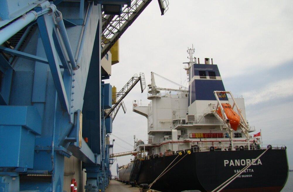Muuga sadam, Panorea, vilja laadimine