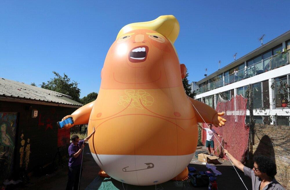 "Briti protestijad upitavad Trumpi visiidi ajaks edetabelite tippu laulu <em>""American Idiot""</em>"