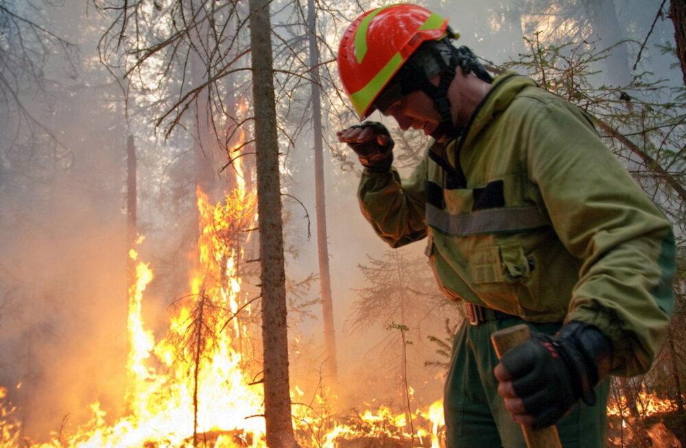 Teadlaste hinnangul nullib kliimamuutus võitluse hiiglaslike metsapõlengutega