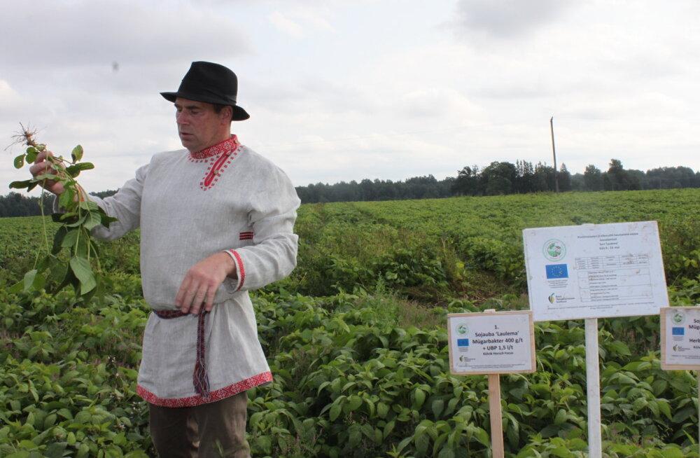 Tänavuseks parimaks taimekasvatajaks tunnistati Madis Ajaots