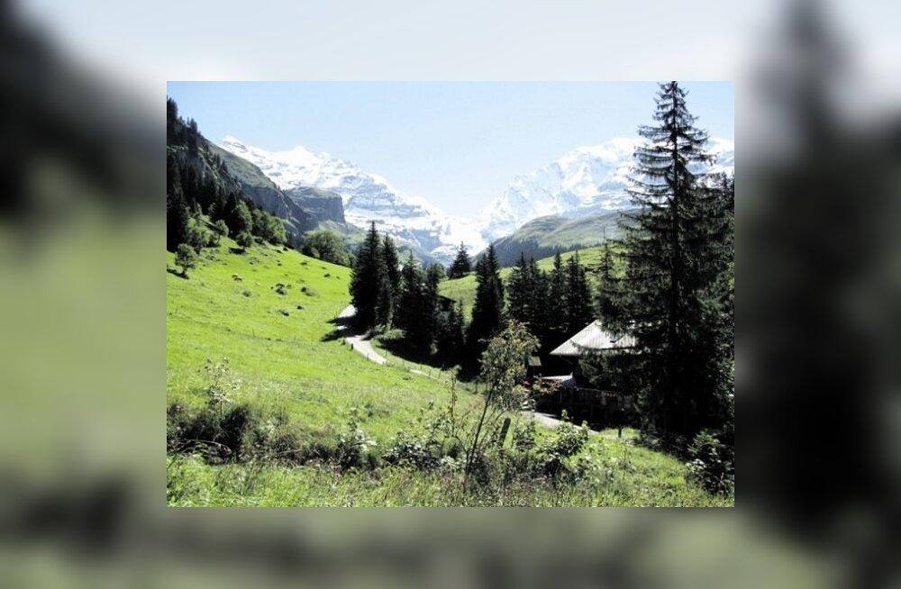 Šveits.