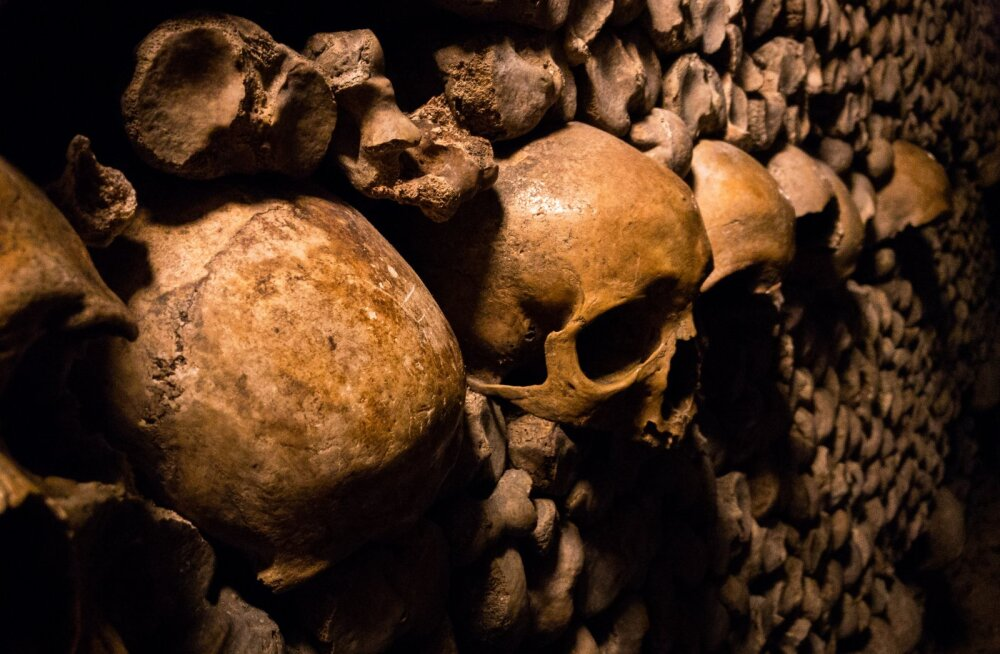Житель Дагестана во время ремонта в доме нашел комнаты с человеческими скелетами