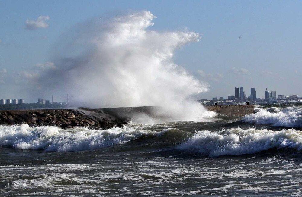 Eilne torm merel