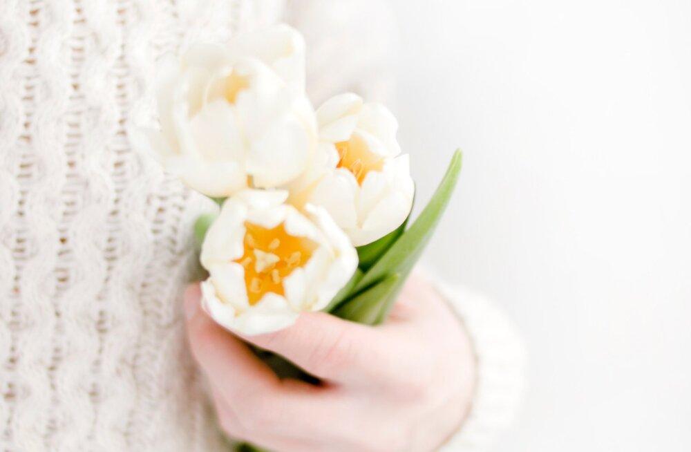 5 вещей, которые нужно сделать этой весной: советы для знаков Зодиака