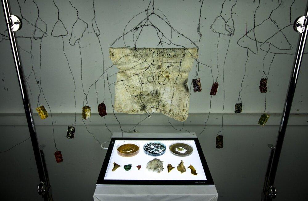 Tulevikumaterjal: moelooja esitleb seentest kasvatatud peakatteid