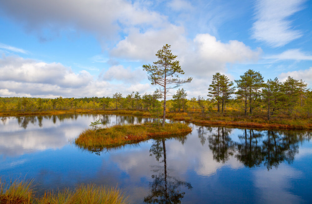 Eestimaa asub naiselikul draakonijoonel, kus on ka meie koduplaneedi kolmas silm