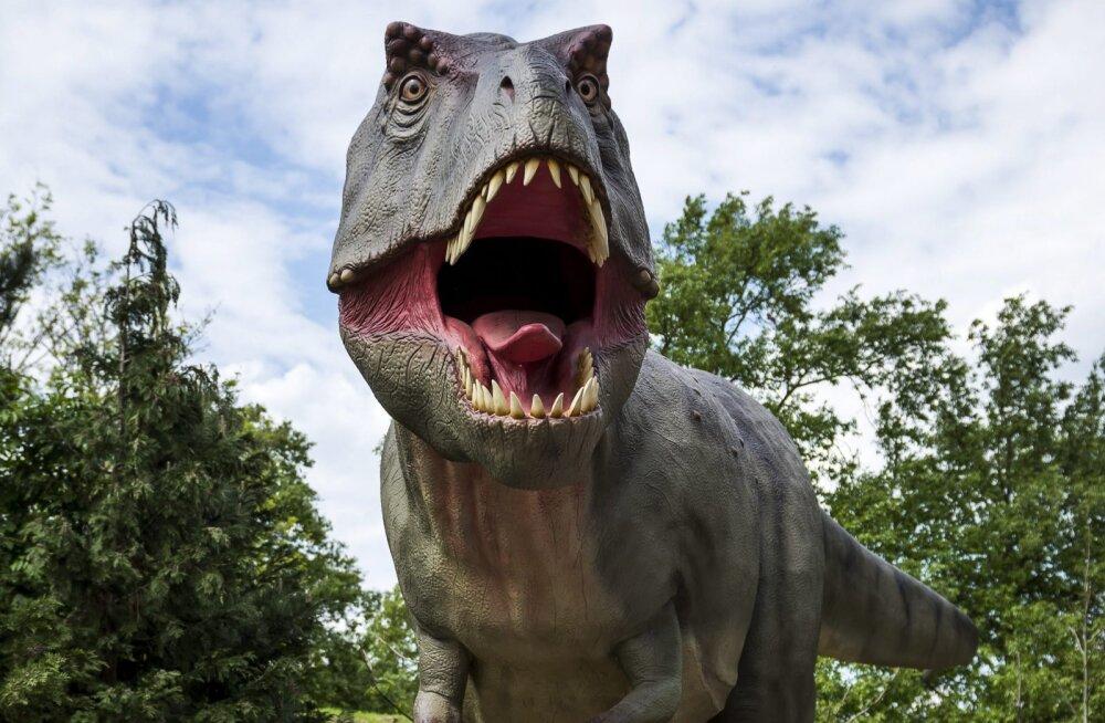 Elu ja surma küsimus: kas inimene suudaks türannosauruse eest ära joosta?