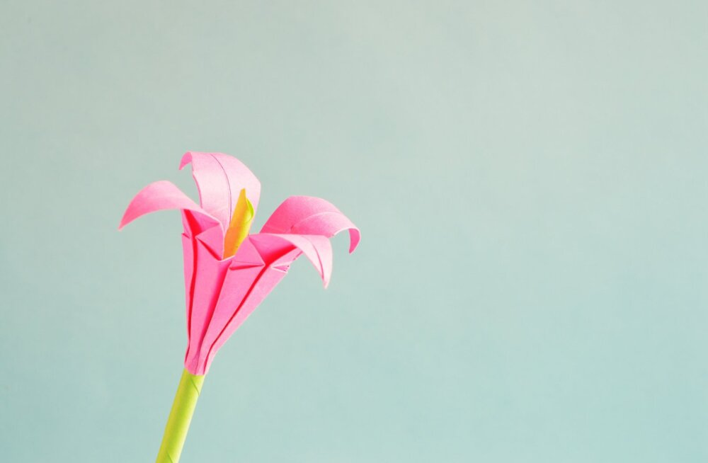 7 лучших хобби для тех, кто часто испытывает стрессы