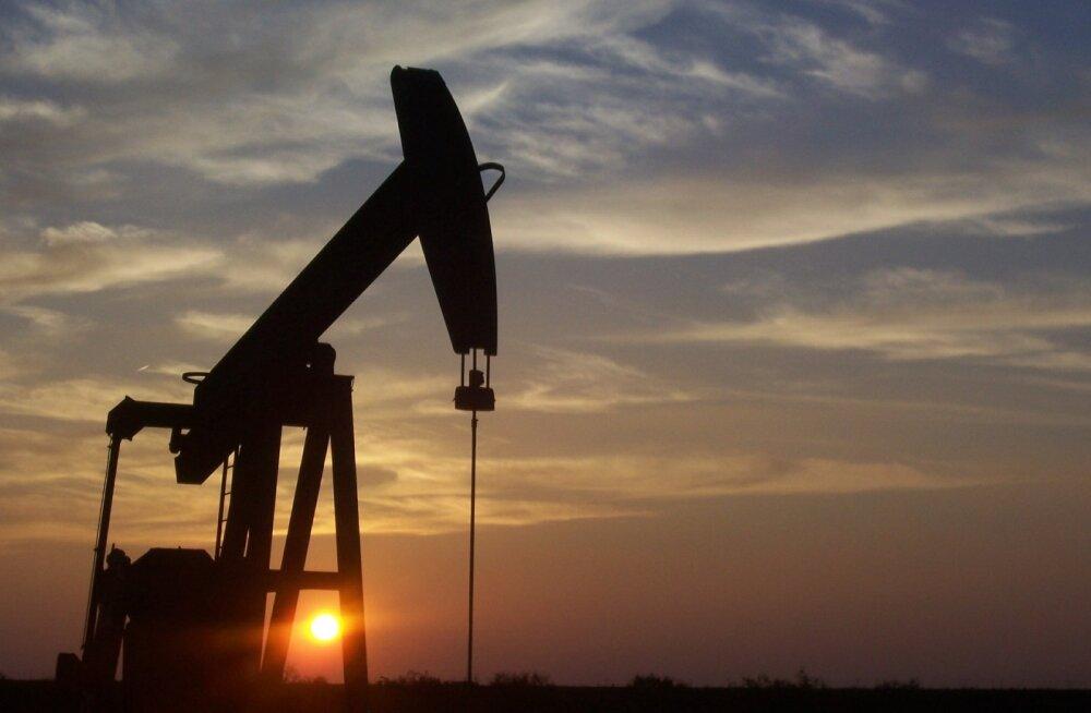Nafta hinna miinusesse langemine ei suutnud Bitcoini raputada