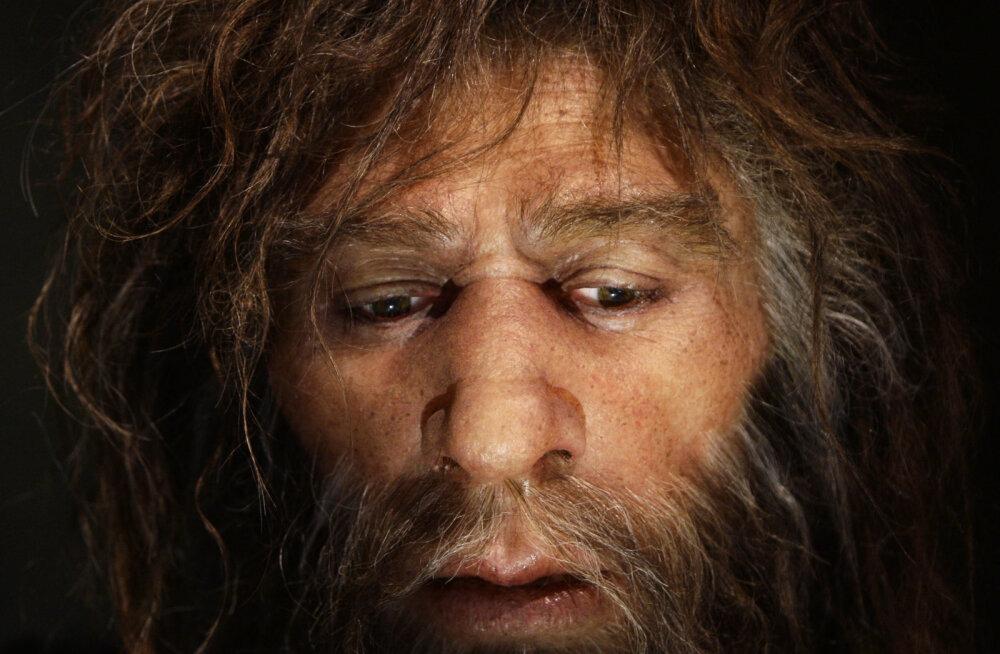 Belgiast leiti uusi tõendeid selle kohta, et neandertallased sõid inimesi