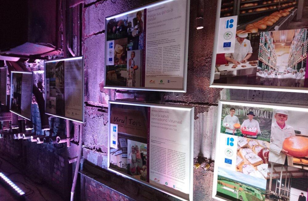 Kultuurikatlas avati näitus toetuste teel edenenud maaelust