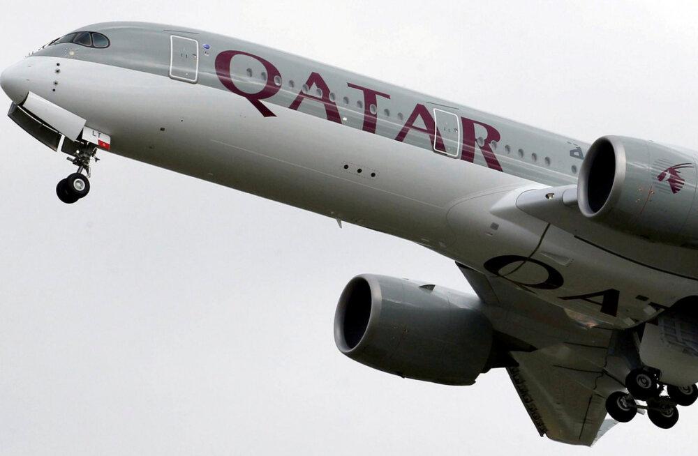 Перелет в 9 минут: бельгийские экологи требуют отменить самый короткий в мире грузовой авиарейс