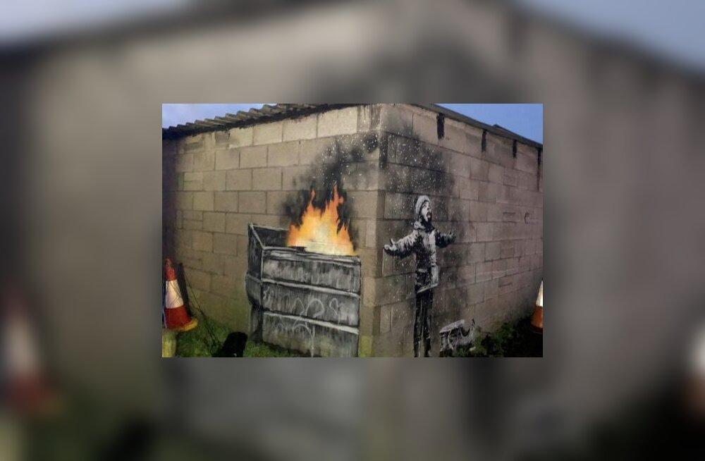 Ratsa rikkaks: graffiti teenis garaažiomanikule üleöö terve varanduse