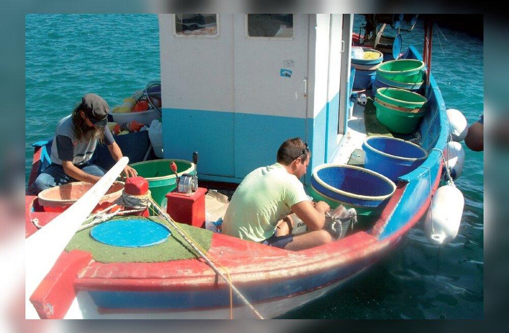 34a39b7cb5c Ida-Egeuse saared: meelerahu elab siin - Reisijuht