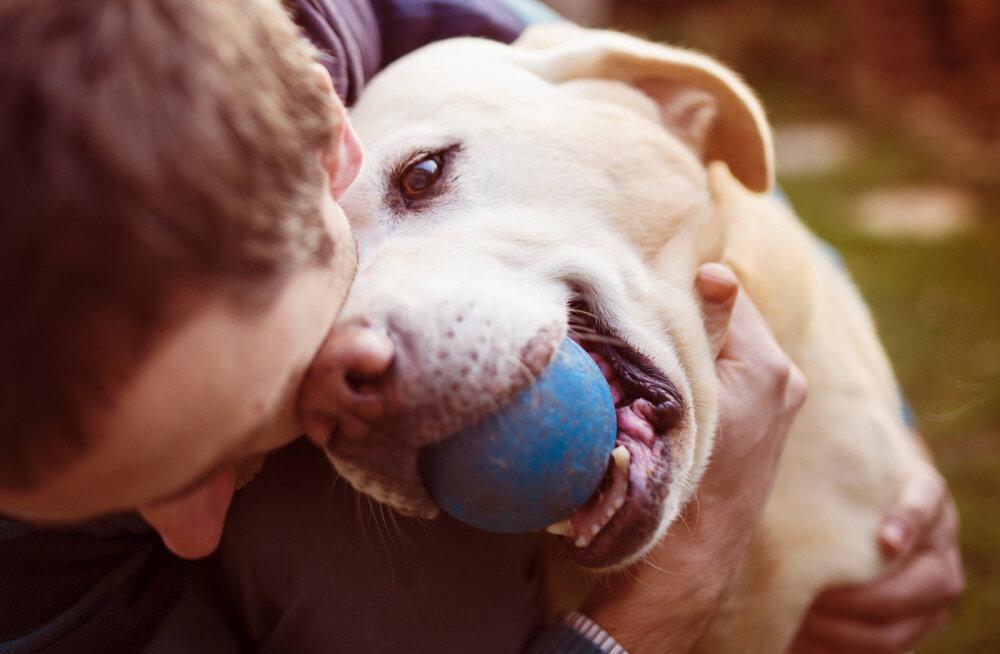 Täna on ülemaailmne loomakaitsepäev | Eksperdid kinnitavad, et inimesed ei ole loomadest targemad, vaid lihtsalt erinevad