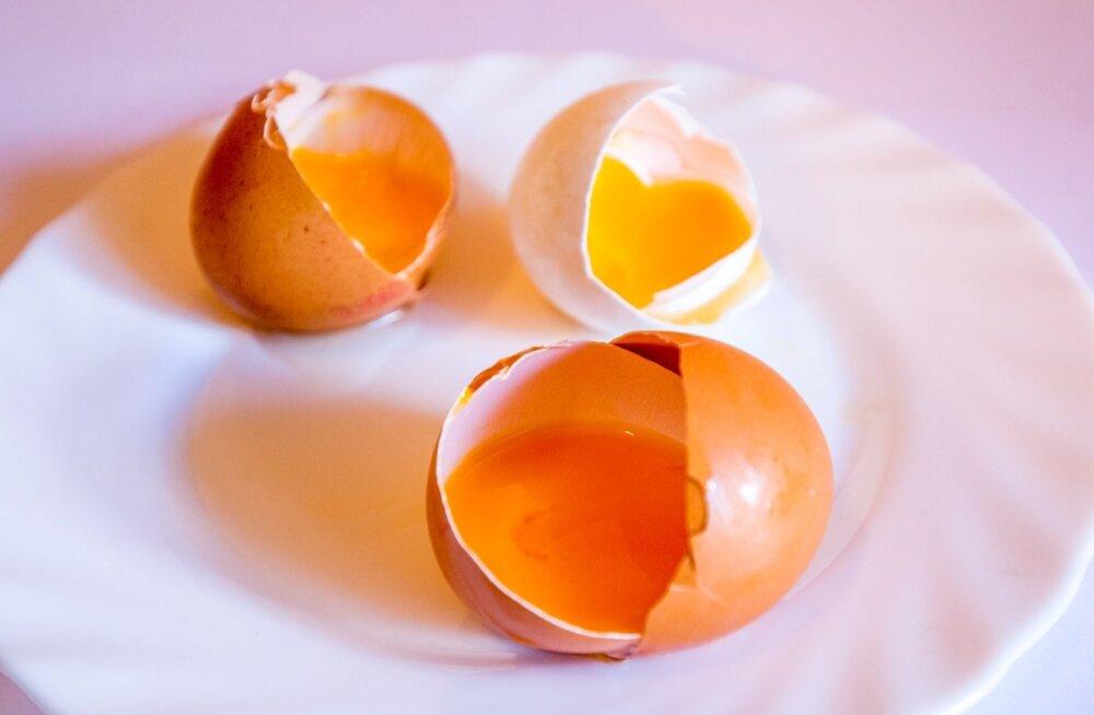 Яйца в питании ребенка: сколько полезно?