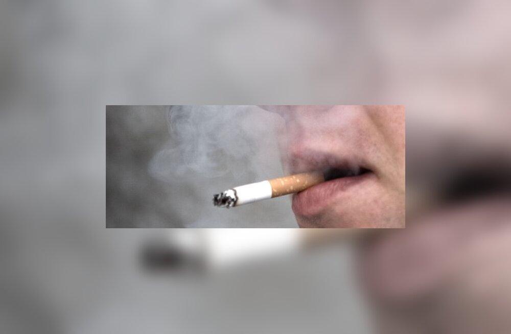 Nikotiinivaba suits varsti võimalik