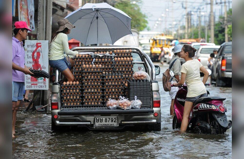 Eestlane Tais, kuidas mõjutavad üleujutused sinu sealviibimist?