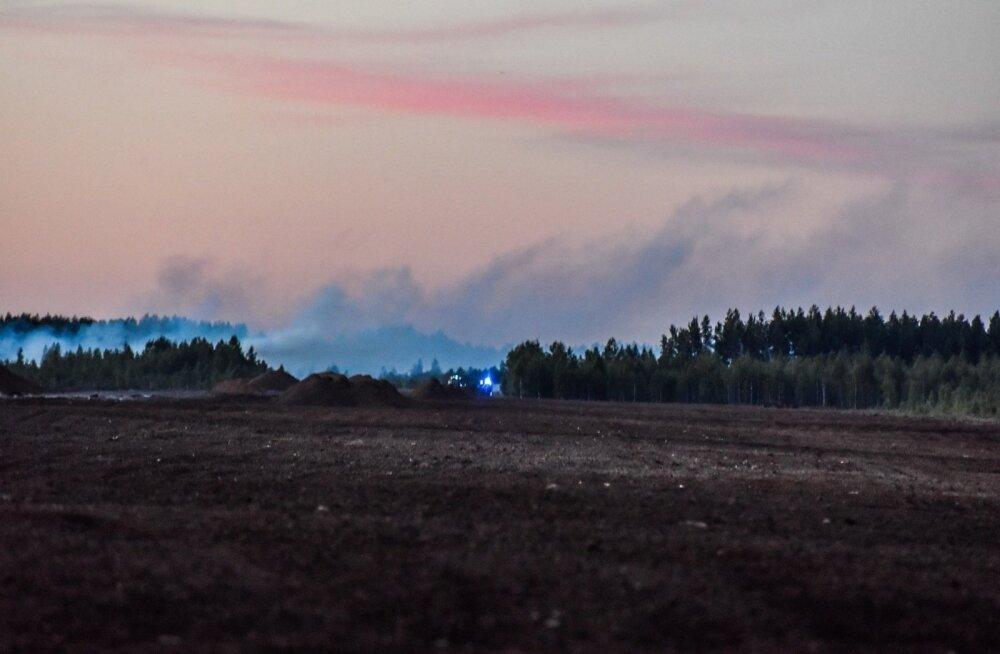 В Ярвамаа загорелось болото