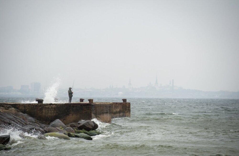 Ilmateenistus hoiatab, et homme on oodata sügishooaja esimest tormi. Äkilised tuulepuhangud võivad puid murda