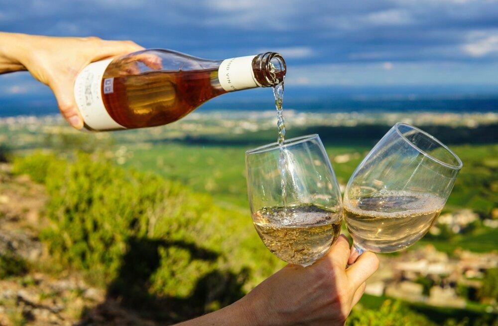 Veinil ja veinil on vahe: need neli veini polegi nii tervislikud kui sa ehk arvata võid