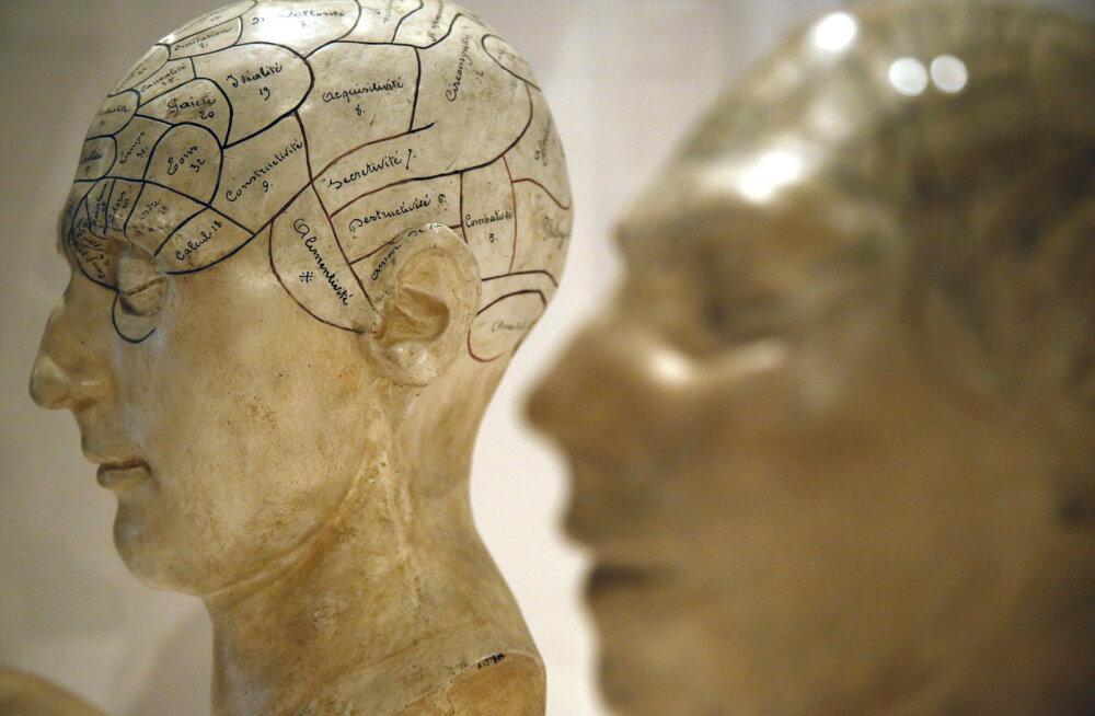"""Tõeliselt tume kunstmõistus: MITi teadlased lõid maailma esimese """"psühhopaadist"""" tehisintellekti"""