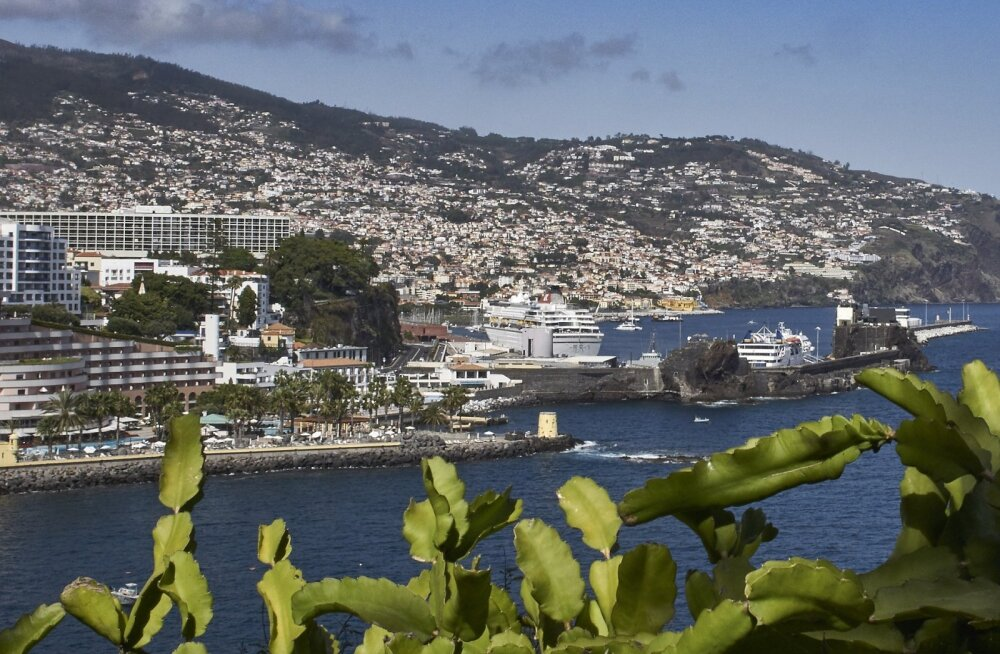 Viimase hetke pakkumine Helsingist Madeirale: edasi-tagasi otselend 45€!
