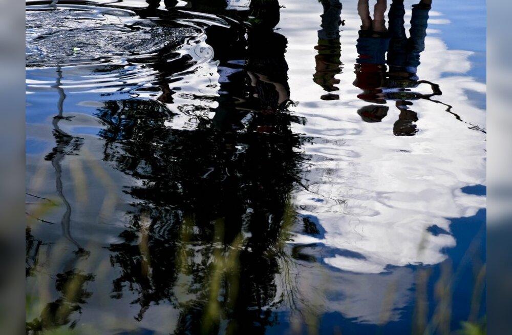 Mehed püüdsid Pärnu jõel elektriga kala