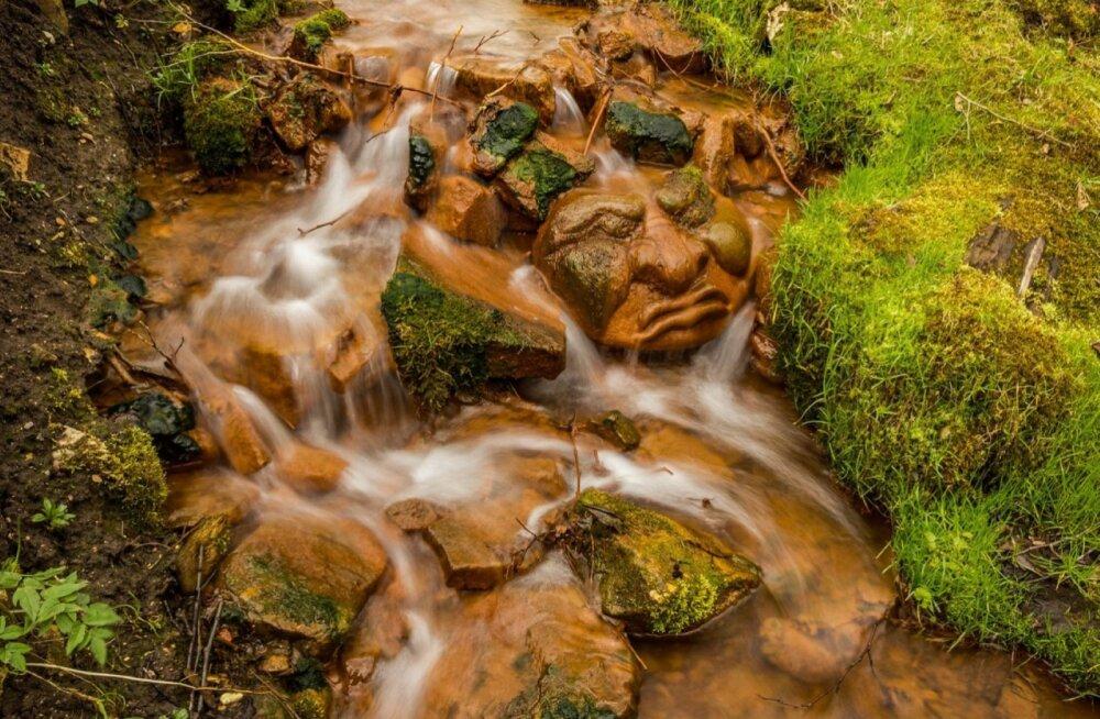 FOTOD | 9 omapäraste skulptuuridega parki ja loodusrada, mida Lätis külastada