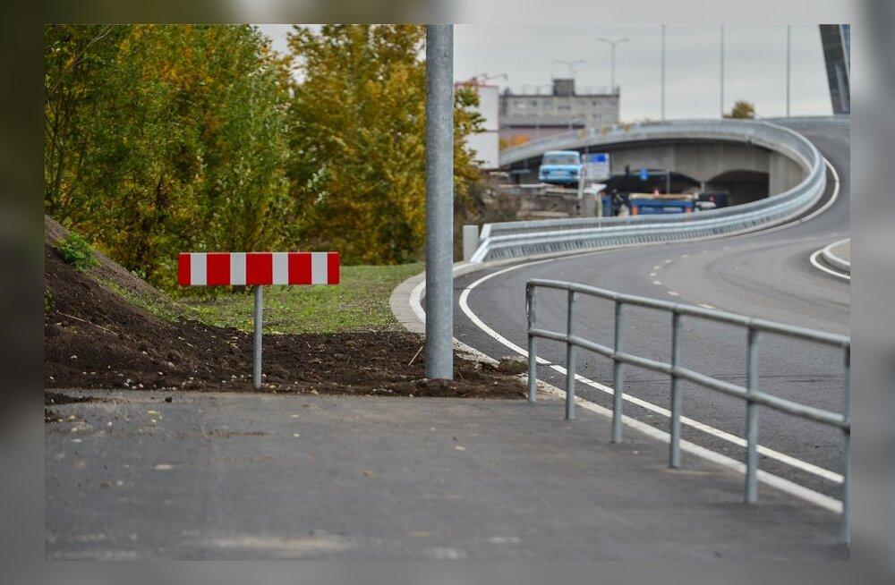 DELFI FOTOD: Järvevana teel liiklev jalgrattur võib end ootamatult muru pealt avastada