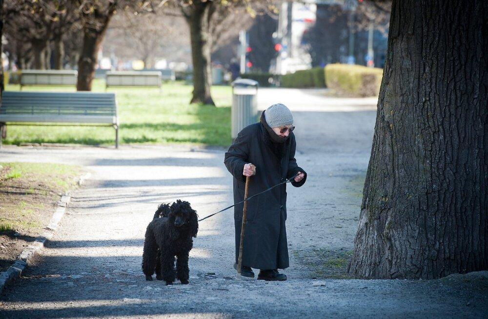 Vanainimene koeraga