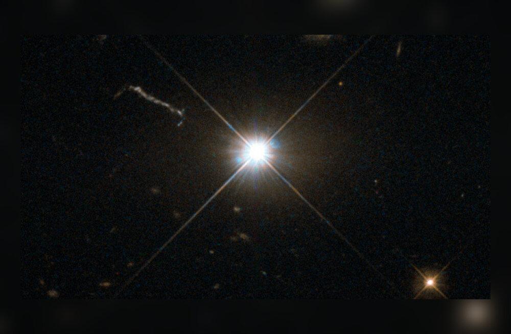Hiiglaslik must auk õgib iga kahe päeva tagant Päikese jagu mateeriat