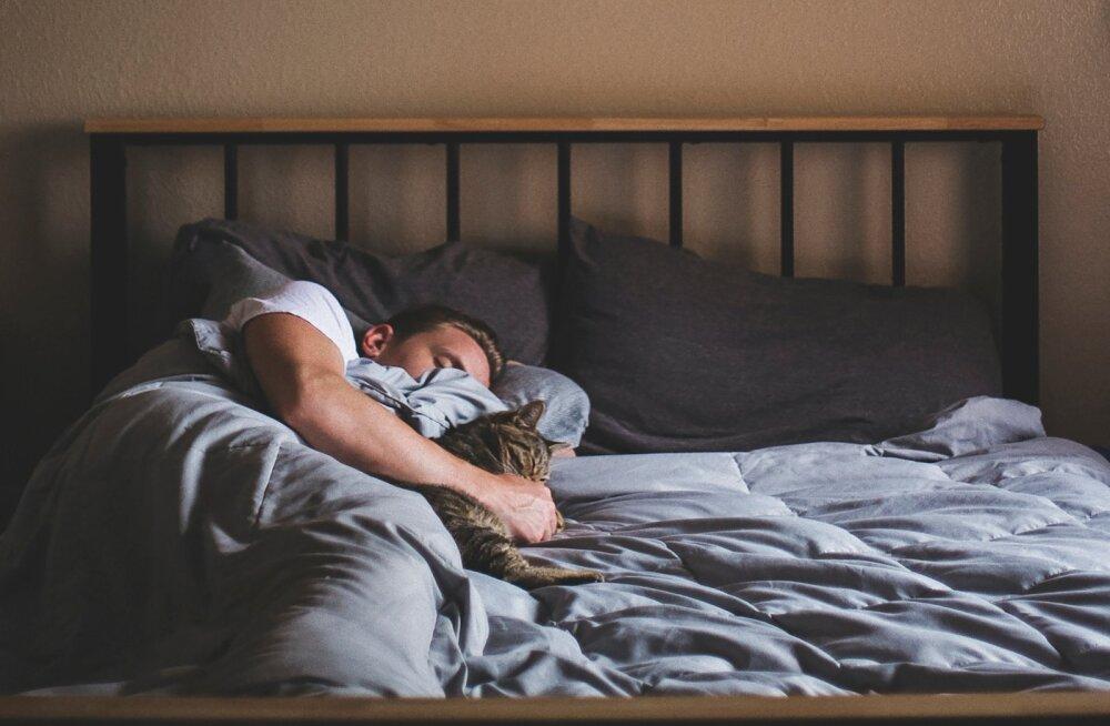 Neid nippe järgides saad kerge vaevaga muutuda hommikuinimeseks ja hakata tööpäeva hommikutest rõõmu tundma