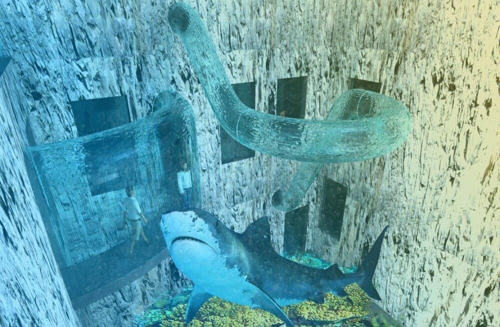 Haiakvaariumi rajamise plaan on julm, selle toetamine ei saa EAS-ile hästi lõppeda