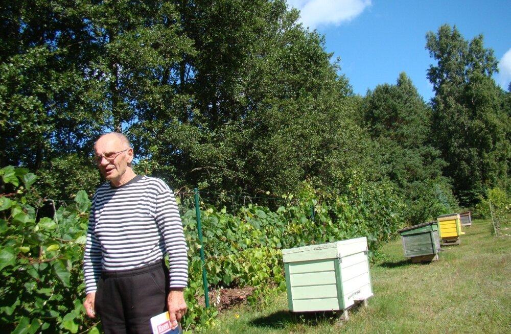 Ruhnu mesinik Rooslaiu talu peremees Vello Kümmel oma mett ei reklaami. Ajakirjanik ostis Kümmeli käest umbes 1,5-kilose meepüti kümne euro eest.