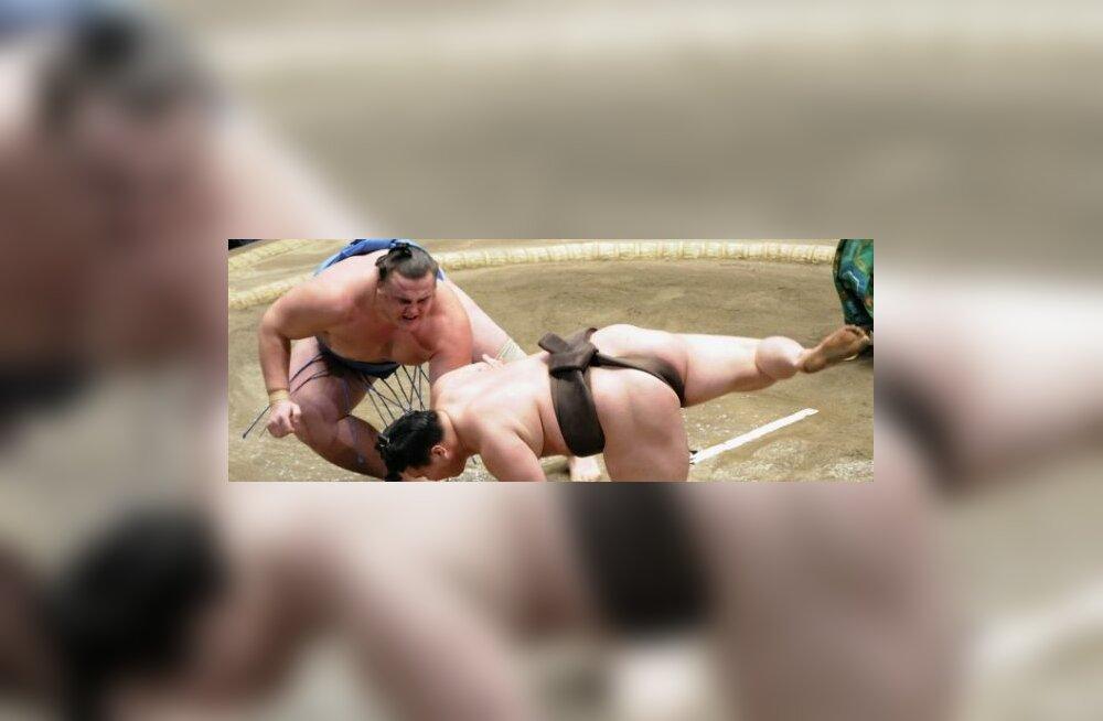 Baruto alistab yokozuna Hakuho, sumo