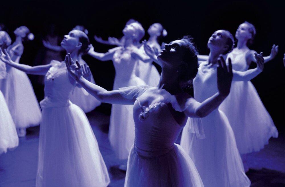 ФОТО | Первый за многие месяцы балетный концерт в Таллинне представит искусство молодых танцовщиков из 5 стран мира
