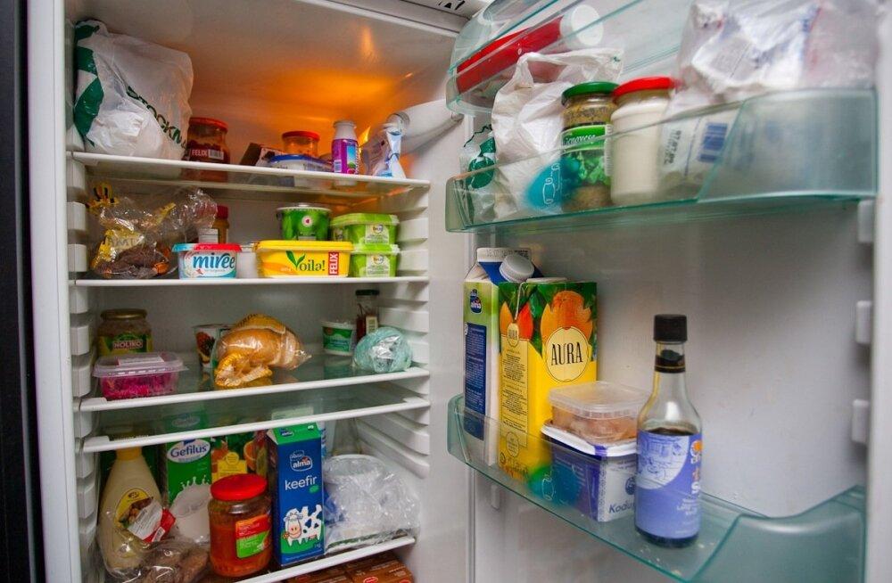 Суперпластырь предупредит об испорченных продуктах