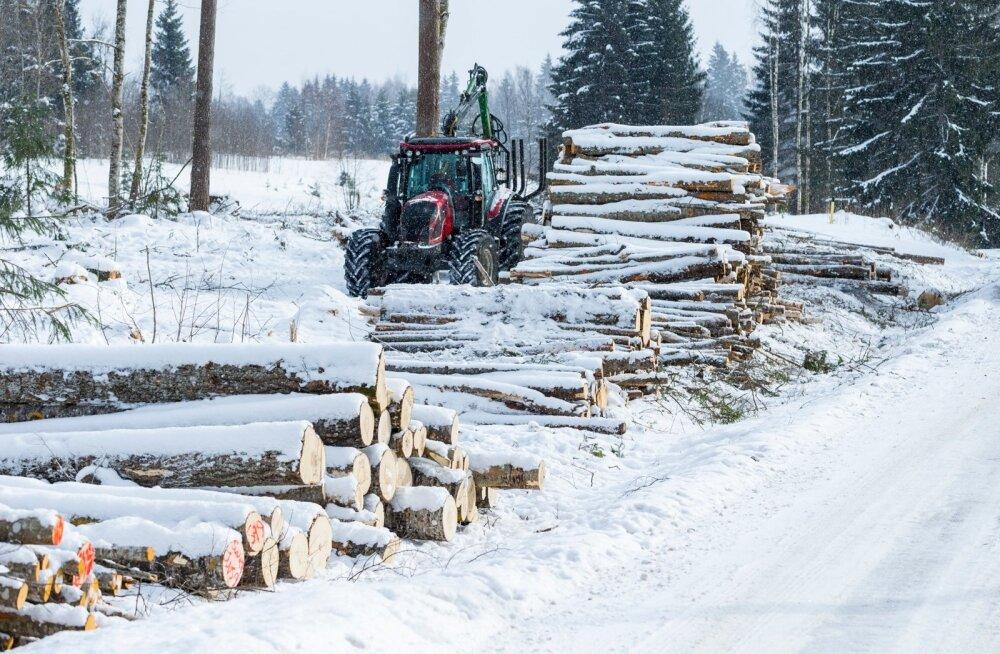 Eesti puidu ja puittoodete eksport kasvas 12%