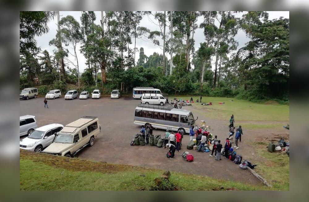 Kilimanjaro — mitte ainult alpinistidele, 3. osa | Ja hakkamegi minema, ees ootab elu suurim seiklus