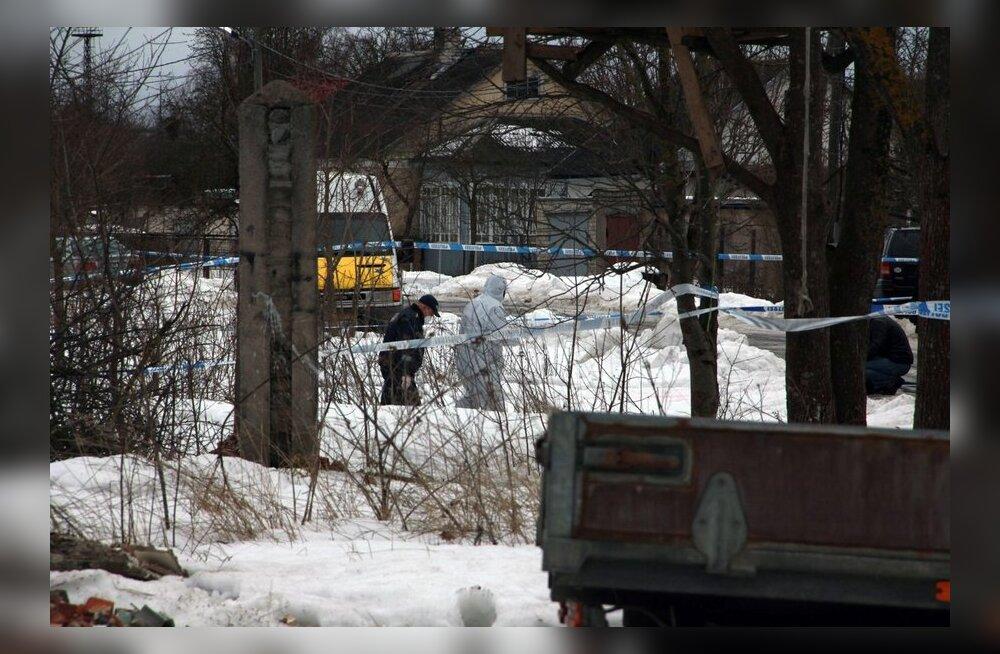 Politsei: Varvara leidmiskoht otsiti veel eile läbi