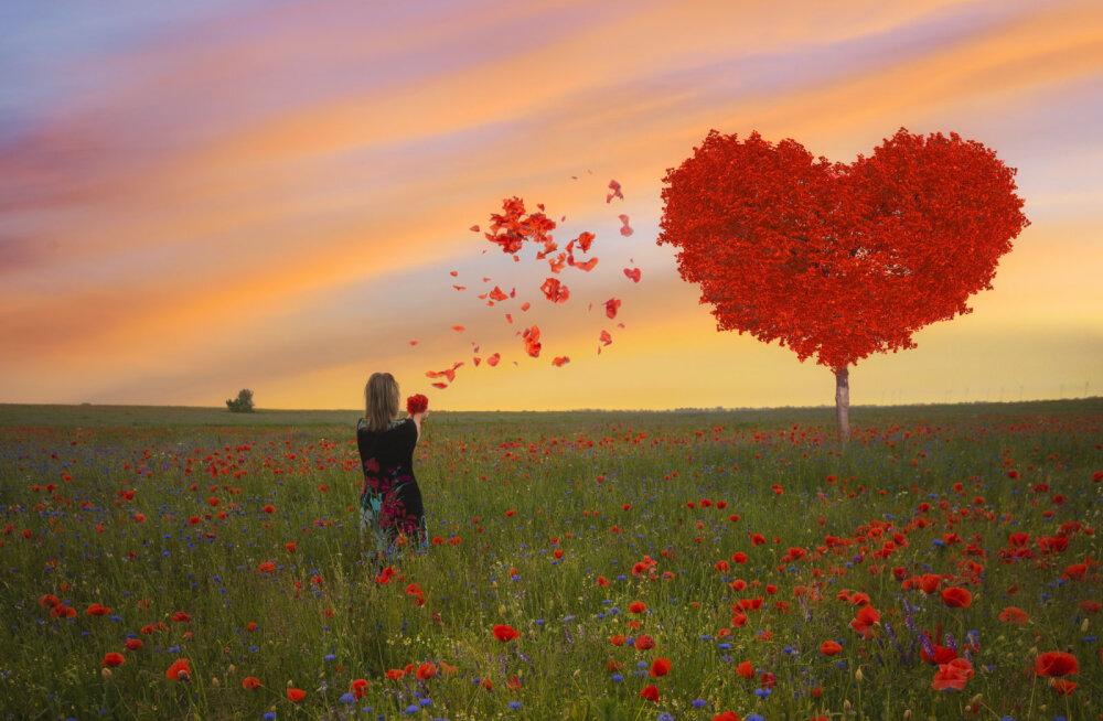 Hakka juba täna elama: armasta ja ole tänulik