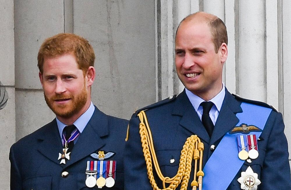 Kehakeele ekspert paljastab printside suure tüli: lõhe Harry ja Williami vahel aina süveneb!
