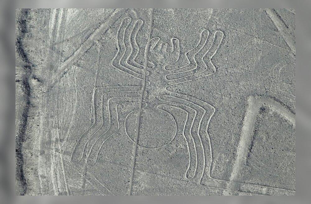 Nazca müstilised hiigeljoonistused moodustavad lausa labürindi