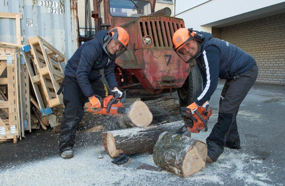 Kodukasutuseks pole mõtet soetada profile metsalangetajale mõeldud võimsat kettsaagi.