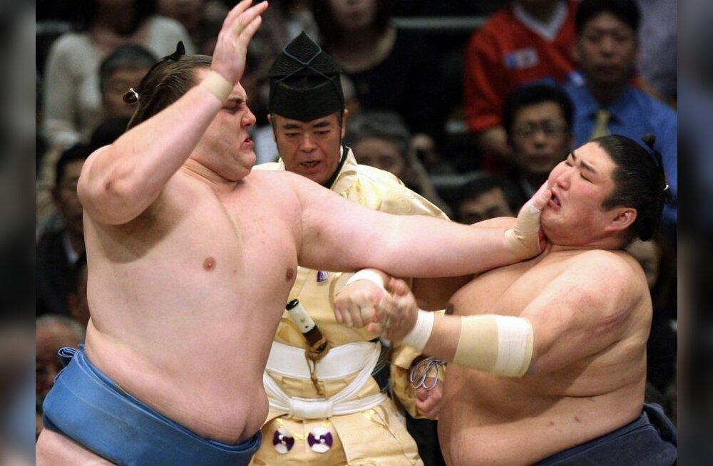 Baruto (vasakul) kohtub Kotomitsukiga, sumo