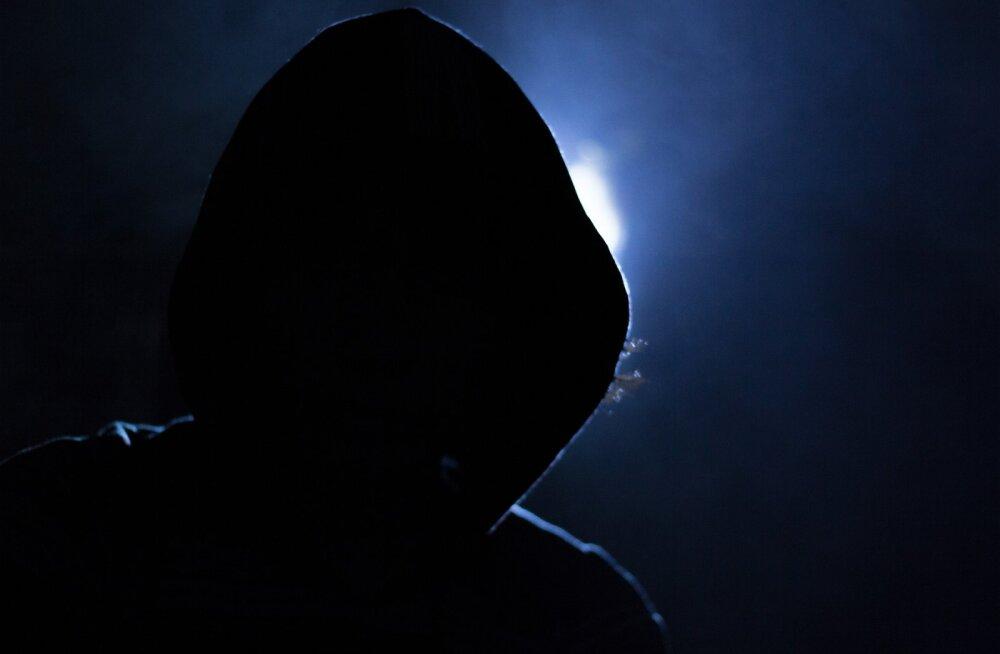 Hoiatus: Torrentitega kaasnev pahavara suudab vahetada krüptotehingute aadresse